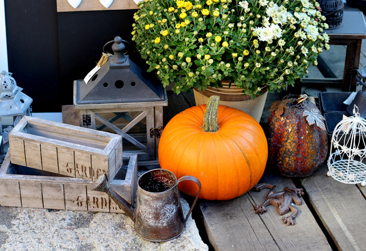 Pumpkins on a deck decorated for fall