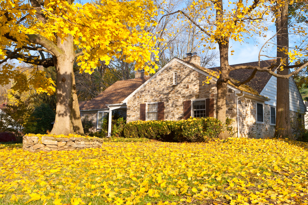Suburban home with Fall colors